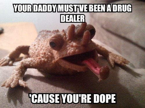 funniest_pick_up_lines3