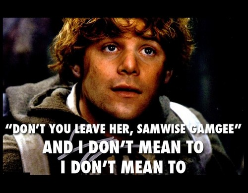lord_of_the_rings_pick_up_lines5