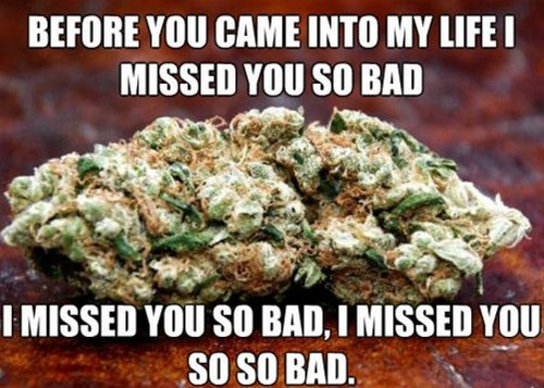 marijuana_pick_up_lines3