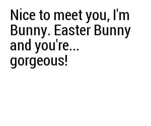 bunny_pick_up_lines1