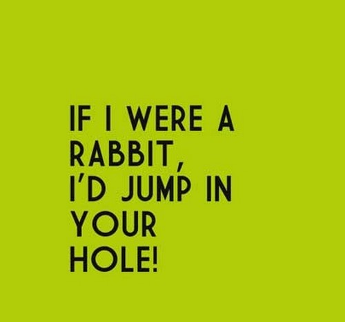 bunny_pick_up_lines2