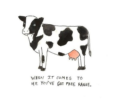 cow_pick_up_lines7