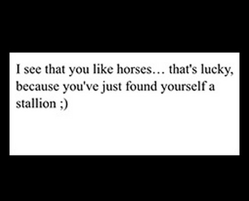 horse_pick_up_lines1